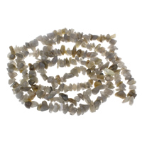 Labradorite Beads, 3x8x10mm-5x7x12mm, Hole:Approx 1mm, Approx 250PCs/Strand, Sold Per Approx 17.5 Inch Strand