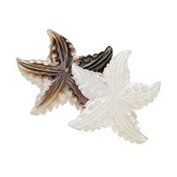 Кабошоны из ракушек, Ракушка, Морская звезда, натуральный, Много цветов для выбора, 27x23x4mm, 10ПК/Лот, продается Лот