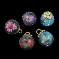 Szkło Globe wisiorek, ze Suszonych kwiatów & kaucja stopu cynku & Kryształ górski, Platerowane w kolorze złota, dostępnych więcej kolorów, 16x20mm, otwór:około 3x3mm, sprzedane przez PC