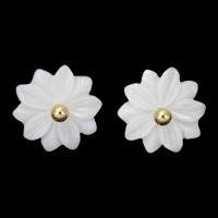 Белая ракушка Сережка-гвоздик, с Латунь, Форма цветка, плакирован золотом, 15x3mm, продается Пара
