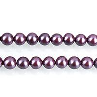 Бусины из ракушек с Южного моря, южноморская ракушка, Круглая, фиолетовый, 6mm, отверстие:Приблизительно 0.7mm, Приблизительно 64ПК/Strand, Продан через Приблизительно 16 дюймовый Strand