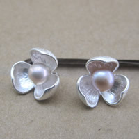 Серебро 925 пробы Сережка-гвоздик, с Пресноводные жемчуги, Форма цветка, 6mm, продается Пара