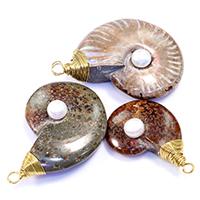 Colgante de piedras preciosas fósiles de amonita, с Пресноводные жемчуги & Латунь, плакирован золотом, природный & разнообразный, 30-43x45-60x13-15mm, отверстие:Приблизительно 4mm, 5ПК/Лот, продается Лот