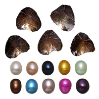 Freshwater Cultured Love Wish Pearl Oyster Rice mixed colors 9-9.5mm Sold By Lot