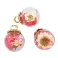 Кулон стеклянный глобус, Стеклянный, с Сухих цветов & цинковый сплав под залог & Кристаллы, плакирован золотом, Много цветов для выбора, 16x20mm, отверстие:Приблизительно 3x3mm, продается PC